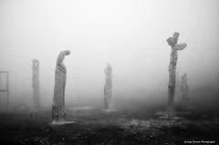 (Giorgos-S) Tags: mist fuji x100 parnitha