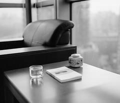 Leisure reading (Dechiffreur) Tags: d76 shanghaigp3 makina670 primefilm120pro