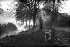 Early morning (Roberto Spagnoli) Tags: alba dawn sunrise raggidisole sunbeam biancoenero blackandwhite cane dog controluce backlight nebbia fog fosso ditch people animal autumn fall