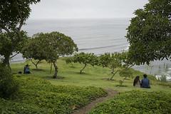 DC3317  DSC0507a6000  El Parque del Amor  ©2016 Paul Light (Paul Light) Tags: elparquedelamor lima peru candid couples ocean park trees