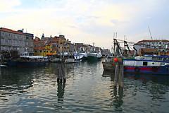 Chioggia (marco marescotti) Tags: water barche acqua chioggia
