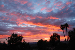 Congratulations my son! (Alexandra Rudge. Thanks for your friendship!!!) Tags: california eve sunset sky naturaleza mountains nature colors canon atardecer evening twilight sundown sunsets paisaje colores cielo puestadesol atardeceres crepusculo ocaso crepuscule tarde anochecer nightfall montanas gloaming claroscuro angelus anocheciendo eventine firmamento vespertino atardeciendo rosicler californiasunset caidadelsol californiasunsets luzcrepuscular blinkagain flickrhivemindgroup alexandrarudge flickrsfinestimages1 paisajedemontana evefall afoscarse entenebrecer vigilantphotographersunite