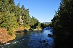 DEH_7104 (sobca) Tags: oregon river oakridge willamettenationalforest highway58 middleforkwillametteriver greenwaterspark 97463 greenwatertrail larisonrocktrail