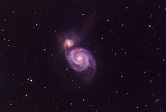 The Whirlpool Galaxy (M51) (kappacygni) Tags: stars spiral space galaxy astrophotography m51 phd canesvenatici starlightxpress eq6 Astrometrydotnet:status=failed qhy5 astro:subject=m51 sxvrh18 tmb92ss bestastro astro:gmt=20130405t2330 Astrometrydotnet:id=supernova5044