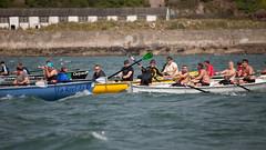 20130901_29252 (axle_b) Tags: haven wales club river yacht south rowing longboat regatta milford celtic pembrokeshire milfordhaven cleddau pyc gelliswick celticlongboat pembrokeshireyachtclub canon5dmk2 70200lf28l welshsearowing