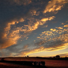 (Eric Goncalves) Tags: trees sunset england evening earth gloucestershire fields canon7d tamronspaf1024mm ericgoncalves