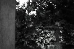 lightning#6 (UBU ) Tags: water blackwhite noiretblanc blues dreams biancoenero fulmini blunotte bluacqua ubu unamusicaintesta blusolitudine landscapeinblues bluubu luciombreepiccolicristalli
