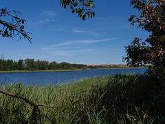 Feisnecksee (alustar99 - offline) Tags: mecklenburgvorpommern waren mritznationalpark feisneksee feisnek