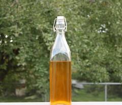 Homemade Mead (CaptainHowdy01) Tags: bottle wine drink beverage honey drinks alcohol mead vikings viking homebrew beverages bottled starnold drinkofthegods homebrewedmead