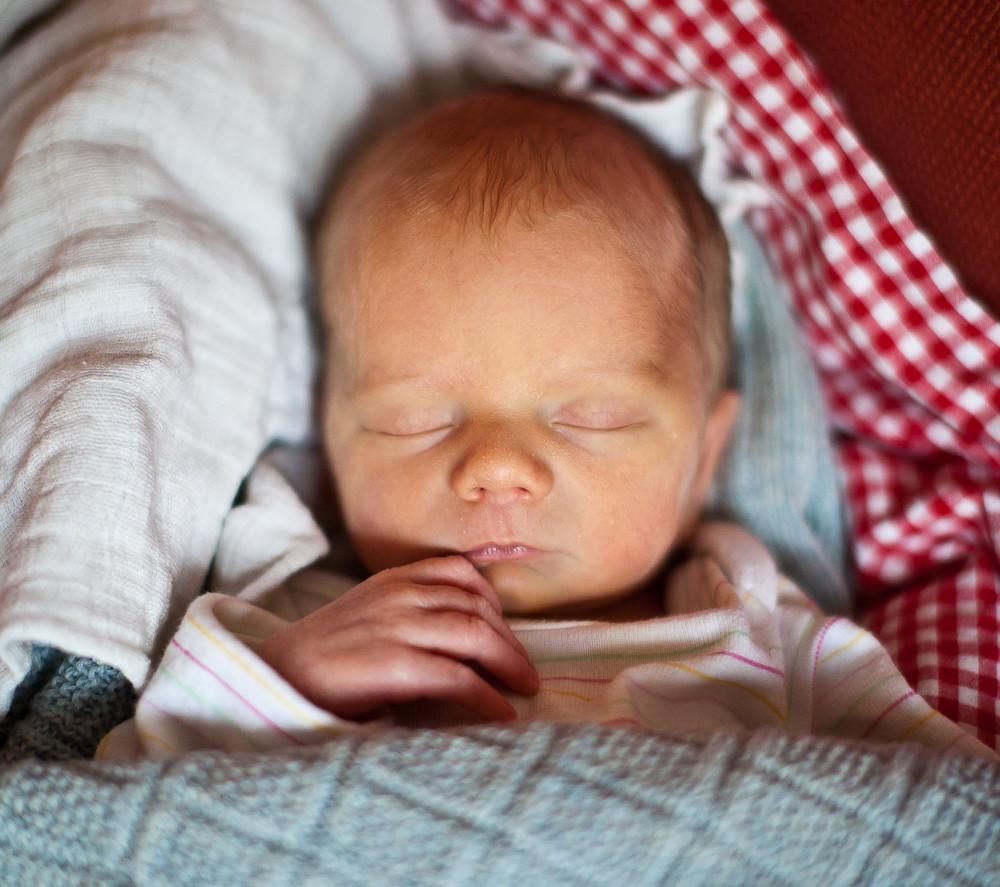 søvnbehov barn