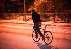 S-Works 13 (pasipasi) Tags: winter finland fixedgear oulu talvi specialized sworks tuira koskitie