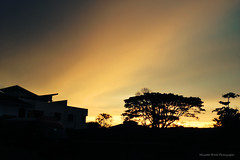 (Micartttt) Tags: sunset silhouette micarttttworldphotographyawards micartttt
