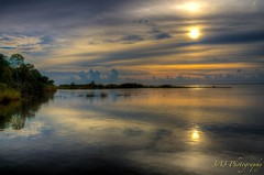 Mobile Bay (bartmanwegl5) Tags: creativemindsphotography flickrsfinestimages1 flickrsfinestimages2 flickrsfinestimages3