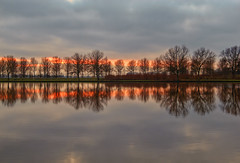 Trees are poems that the earth writes upon the sky (Wim Koopman) Tags: trees winter sunset sky lake holland reflection netherlands dutch up clouds canon golden pond day mood cloudy bare magic nederland atmosphere powershot hour plas linedup lined goudriaan s95 slingelandse