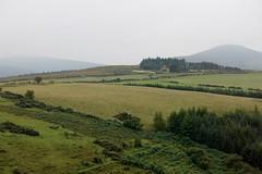 Republic of Ireland (bobindrums) Tags: ireland legend carnivalcruise carnivallegend republicofireland