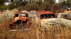 Peak Hill Car Graveyard 1 (Darren Schiller) Tags: abandoned car rust automobile australia rusted disused derelict decaying holden