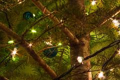 Christmas Tree, 2013 (Ed Suominen) Tags: christmas tree lights raw availablelight christmastree noflash fir lightroom tonemapping