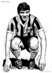 Grêmio Alcindo