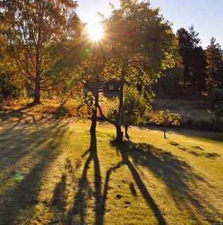 Warm September sun [Explored]