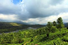 Beautiful Munnar. (AgniMax) Tags: india clouds river tea kerala hillstation munnar
