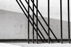 Vitra Design Museum - Basel - Zaha Hadid (Nicco Bra) Tags: blackandwhite bw verde scale museum architecture stair exterior basel staircase vitra architettura tadaoando zahahadid basilea herzoganddemeuron vitramuseum