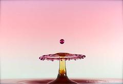 Glass (Heidi Southworth) Tags: pink red orange macro water beautiful yellow closeup canon droplets drops colours time machine drop drip 7d droplet kit splash highspeed timemachine highspeedphotography mumford beautyofwater simplysuberb mumfordtimemachine dripkit