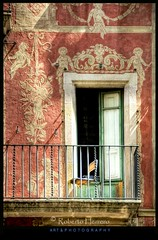 Ventana a la Rambla. (RobertoHerrero) Tags: barcelona old building window reja rojo chair angeles balcon antiguo cataluña estuco traceria mygearandme mygearandmepremium mygearandmebronze mygearandmesilver mygearandmegold mygearandmeplatinum mygearandmediamond flickrbronzetrophygroup flickrstruereflection1 fachadasconencanto2dconcurso38