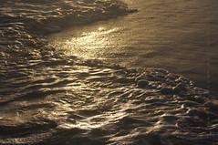 ... golden foam (mariola aga) Tags: ocean light reflection beach water sunrise golden sand dominicanrepublic shoreline resort foam tones atlanticocean puntacana bavaro thegalaxy hardrockhotelcasino mygearandme mygearandmepremium mygearandmebronze