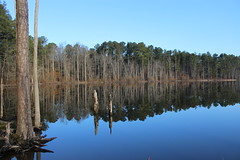 The day the earth stood still (Sam0hsong) Tags: reflections day northcarolina clear mornings fallslake hallelujah