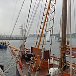 Rostock - Segelschiff »STAR OF HOPE« im Rostocker Stadthafen (2) thumbnail