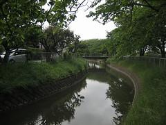 IMG_0006S (y-saida) Tags:  jpn saitamaken { { oomaki