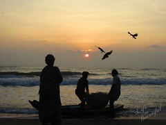 Fishermen (smart_janson1729) Tags: pictures flowers sunset plants lake flower cute chicken beach nature beautiful birds animals cat sunrise butterfly photography photo nice photos pics dove awesome picture butterflies kerala snaps poo hen chennai kili scenaries lifeisbeautiful clicks janson poocha gothuruth chennaimathematicalinstitute jansonantonya