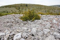 Tumulus: gorges du Tarn (AJ Mitchell) Tags: dolmen neolithic prehistoric bronzeage neoltico nolithique megalith tumulus gorgesdutarn