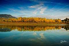 Poplar mirror (Riccardo Maria Mantero) Tags: clouds lake mantero riccardomantero riccardomariamantero autumn blue landscape outdoors poplar reflection travel trees water geocountry exif:make=nikoncorporation exif:model=nikond800 exif:isospeed=100 geostate geocity geolocation exif:aperture=56 exif:focallength=35mm camera:model=nikond800 camera:make=nikoncorporation potd:country=it