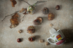 October .. chestnuts ... tea ... (Button-NK) Tags: autumn leaves chestnuts stilllife cup owl tea sugar
