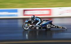 Pro Stock (Fast an' Bulbous) Tags: drag race bike motorcycle track santa pod england outdoor biker rider fast speed power acceleration motorsport nikon d7100 gimp september autumn