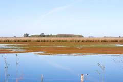 Vista de la Laguna del Juncal (Pablo Brud) Tags: guardiadeljuncal laguna cauelas