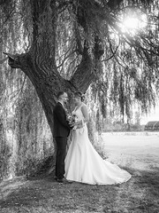 Steph & Kirk (johnnewstead1) Tags: blackwhite monochrome em1 olympus mzuiko wedding weddingphotography weddingphotographer weddingday weddingdress barnhambroom norfolk norfolkwedding norfolkweddingphotographer simonwatson simonwatsonphography johnnewstead we