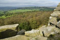 Brimham Rocks (167) (rs1979) Tags: brimhamrocks summerbridge nidderdale northyorkshire yorkshire loversleap