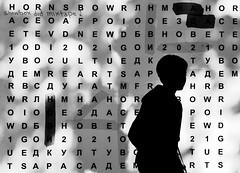 words don`t come easy to me (Zlatko Vickovic) Tags: streetstreetphoto streetphotography streetphotographybw streetbw streetphotobw blackandwhite monochrome zlatkovickovic zlatkovickovicphotography novisad serbia vojvodina srbija