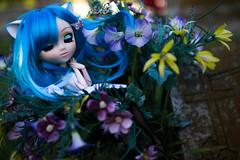 Dreaming Time (dreamdust2022) Tags: aiko chelsea pretty playful cute sweet kitty darling happy loving tender kiss hug pure charming girl pullip doll
