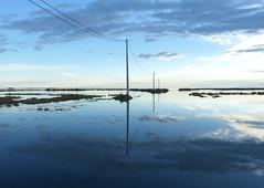 Desprs de la llevantada (cincde82012) Tags: delta river riu ebre ebro montsia catalonia catalunya