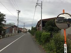 紫_井出_09 (yabuki-keikanWS) Tags: 小道 植え込み 鏡