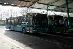 Connexxion 3942 & 8293 (Mercedes Benz Citaro & VDL Berkhof Ambassador)) ([Publicer Transport] Ricardo Diepgrond) Tags: connexxion mercedes benz citaro facelift fl o530 3942 vdl berkhof ambassador maxx almere buiten depot 8293