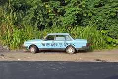 """I Saw the Sign"" (BarryFackler) Tags: car auto message philosophy 2016 graffiti spraypaint volvo roadside vehicle plants foliage leaves vegetation outdoors trees vines sedan hawaii hawaiiisland hawaiicounty hawaiianislands sandwichislands polynesia westhawaii southkona barronfackler barryfackler bigisland kona captaincook intersection captaincookhi napoopooroad captaincookhawaii tropica gravel asphalt fountaingrass monstera"