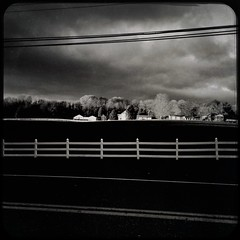 Blustery (wetenz) Tags: hipstamatic iphonecamera iphonese blustery moody blackandwhite bw monochrome laytonsville maryland farm landscape windy cloudy whitefence