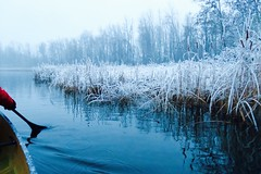 Winter is here! (deanspic) Tags: winter snow trilliumpond reeds rushes snowcovered canoe canoeing 100paddles 108100 g3x wintercanoeing