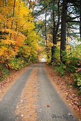 Road Less Traveled (Eyes Open To Life) Tags: country road path autumn fall leaves woods trees nature vermont worldwidelandscapes