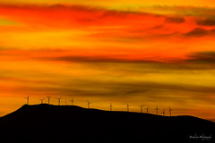 The red sky. (Bouhsina Photography) Tags: bouhsina maroc ttouan morocco rif bouhsinaphotogrphy landscape silhouette palmes hlices turbines vent montagne canon 5diii 2016 best light lumire sunset rouge orange couleur wow