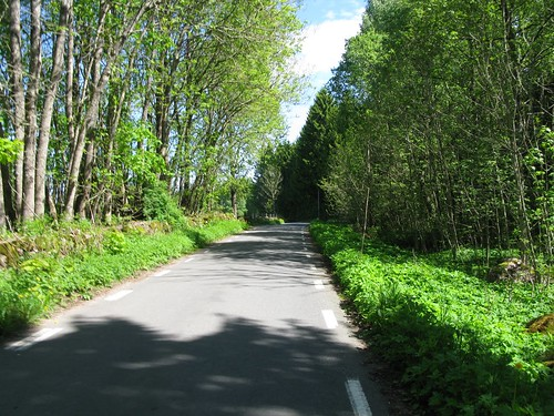 The road between Stenum and Axvall 2010(2)